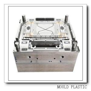 Experienced High-Quality High Precision Plastic Injection Mould (WBM-201001)