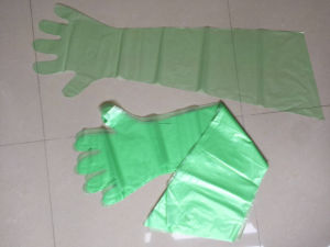PE Veterinary Gloves for Slaughtering pictures & photos