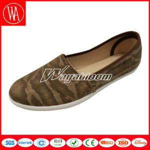Summer/Spring Casual Ladies Canvas Leisures Shoes pictures & photos
