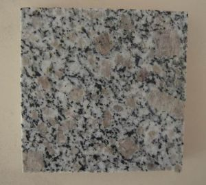 Polished Pearl Flower Granite G383, Cheap Chinese Granite Tile pictures & photos