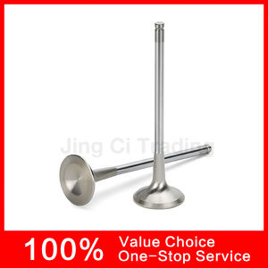 Intake&Exhaust Engine Valve for Ford CT2.0 1.8 Bp01-12-121