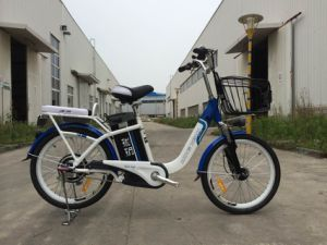 Long Range Electric Bike pictures & photos