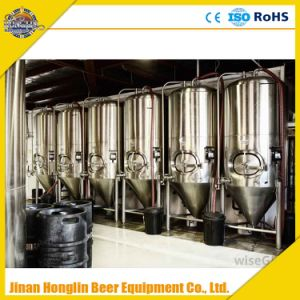 New Condition and Beer Processing Types Stainless Steel Cone Fermenter pictures & photos