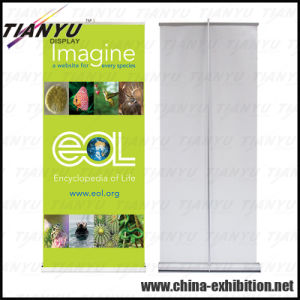 Customized Display Stand Roll up pictures & photos