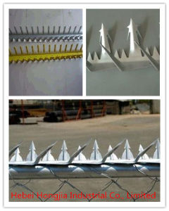 Wall Spike of Galvanized Steel for Protect