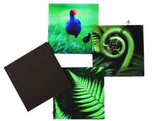Custom Good Quality 3D Lenticular Fridge Magnets pictures & photos