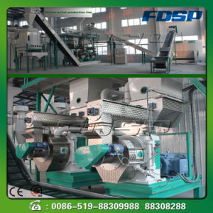 Straw Peanut Shell Pellet Forming Line pictures & photos