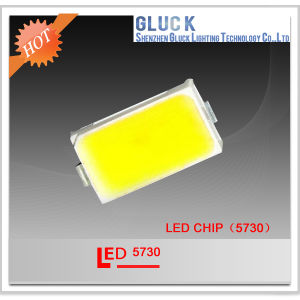 Factory Price 5W 5730 SMD LED Datasheet