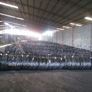 Annealed Black Iron Binding Wire (ISO9001) pictures & photos