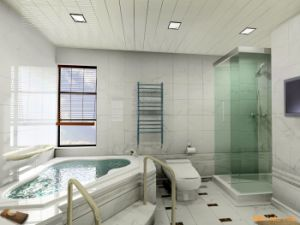 PVC Panel for Bathroom pictures & photos