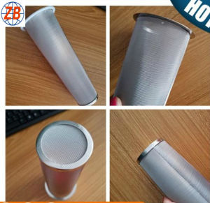 Washable 100 120 Mesh Stainless Steel Mason Jar Cold Brew Coffee Double Layer Filter Tube pictures & photos