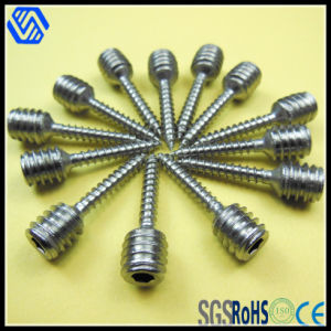 Stainless Steel Cylindrical Hex Socket Cap Double Teeth Screw pictures & photos