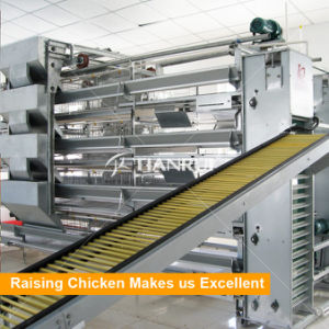 Poultry Farm Automatic Layer Chicken Egg Collecting Machine pictures & photos