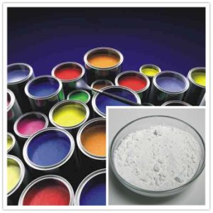 TiO2 Titanium Dioxide Rutile Grade for Paint pictures & photos