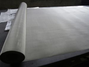 Stainless Steel Wire Netting for Window Screen Mesh pictures & photos