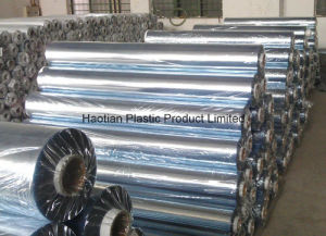 PVC Film for Packaging pictures & photos