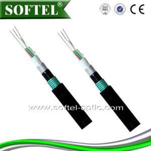 Lszh Jacket FTTH Optical Drop Cable / FRP Drop Cable pictures & photos