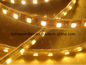 CE EMC LVD RoHS Two Years Warranty, 3528 / 5050 Injection Moulding Half-Moon LED Strip Light pictures & photos