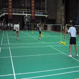 The Professional Manufacturer of PVC Indoor Badminton Flooring with Bwf Certifacation (JYST004) pictures & photos