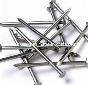 Galvanized Nails (OKI-1111516)