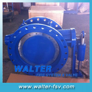 Cast Iron Flanged Butterfly Check Valve pictures & photos