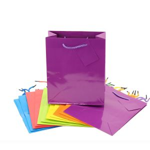 Large or Small Bright Neon Colored Party Present Paper Gift Bag, Glossy Lamination Paper Bag, pictures & photos