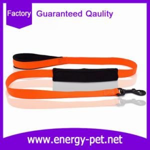 Low Price Personalized Pet Collar and Leash