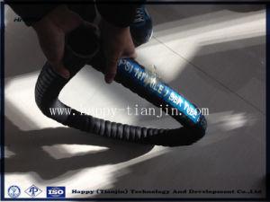 Petroluem Hose/ Fuel Hose/ Gasoline Hose/ Oil Suction and Discharge Hose pictures & photos