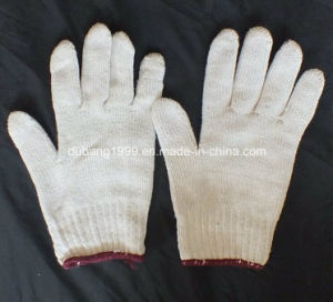 Cotton Glove with Good Quality and Low Price, No-15 pictures & photos