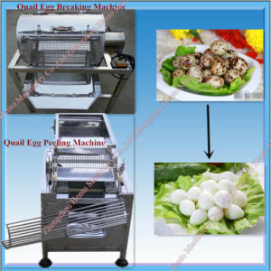 Full Automatic Quail Egg Shelling Machine pictures & photos