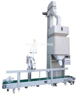 Industrial Food Table Iodized Refined Salt Bagging Equipment Machine pictures & photos