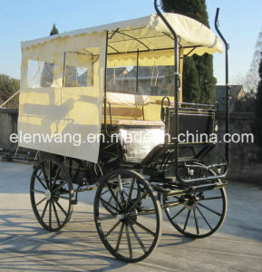 Tourist Marathon Carts with Enclosed Hood pictures & photos