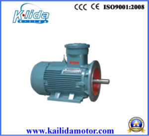 Three Phase Explosion-proof AC Induction Motor pictures & photos