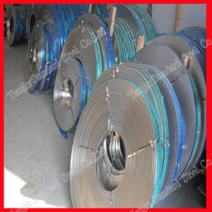 Ss 201 Stainless Steel Strip 0.5mm 1.0mm pictures & photos
