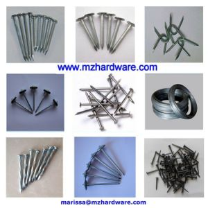 Concrete Steel Masonry Nail for The Middle East Market pictures & photos