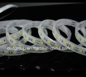 SMD5050 IP68 30/60/72/120LEDs/M LED Flexible Stripe Light for Outdoor Decoration pictures & photos