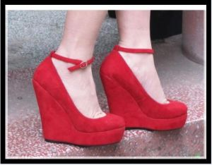 2014 New Fashion High Heel Wedge Ladies Dress Shoes (Hcy02-824)