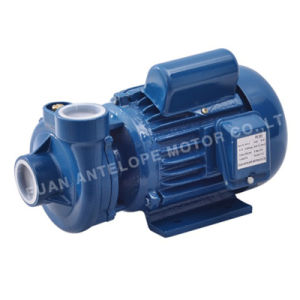 Centrifugal Water Pump (PX) pictures & photos