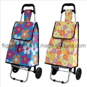 Strong and Convenient of Shopping Barrow Dxt-8327 pictures & photos