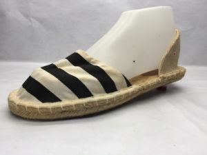 Fashion Espadrilles Canvas Colorful Shoes (23LG1703) pictures & photos