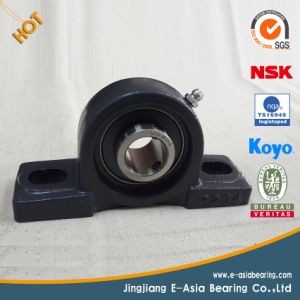 SKF Pillow Block Bearings pictures & photos