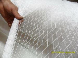 White Brazil Nylon Multifilament Net pictures & photos