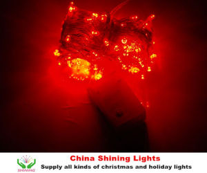 Waterproof Best Selling LED Party Lights pictures & photos