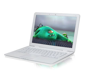14.1 Inch Dual Core OS Win8 Mini Laptop Notebook Computer