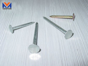 Roofing Nail of Galvanized/ Hot Galvanized/ Color Plating pictures & photos