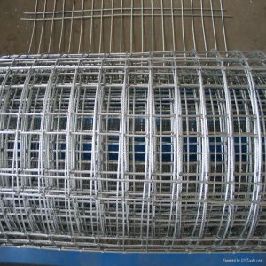 Electro Galvanized Welded Wire Mesh Roll pictures & photos