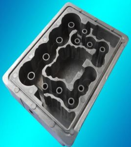 Aluminum Parts for Electric Motor pictures & photos