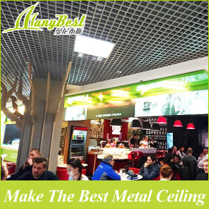 2017 Suspended Aluminum Open Cell Ceiling pictures & photos