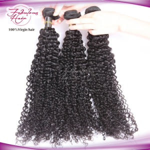 Golden Hair Supplier Indian Human Virgin Kinky Curly Natural Hair pictures & photos