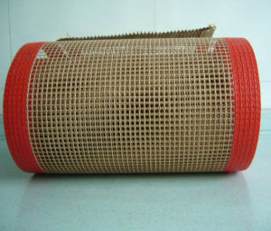 Anti Stick PTFE Mesh Conveyor Belt for Printing and Drying pictures & photos